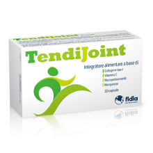 FIDIA FARMACEUTICI</BR>TENDIJOINT